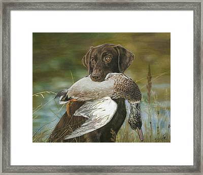 The Chocolate Framed Print by Terry Kirkland Cook