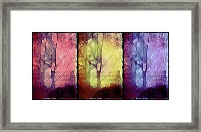 The Choices Of Trees Framed Print
