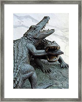 The Chomp Framed Print