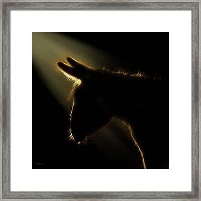The Christmas Donkey Framed Print