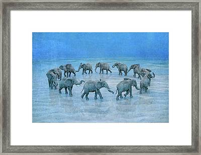 The Circle  Framed Print by Betsy Knapp