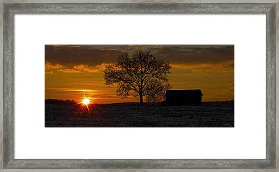 The Circle Of Life Framed Print by Skip Tribby