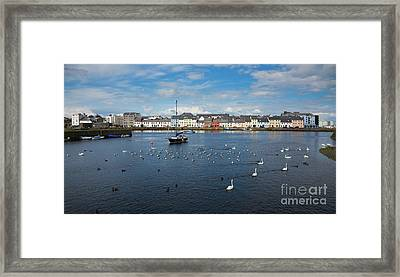 The Claddagh Galway Framed Print by Gabriela Insuratelu