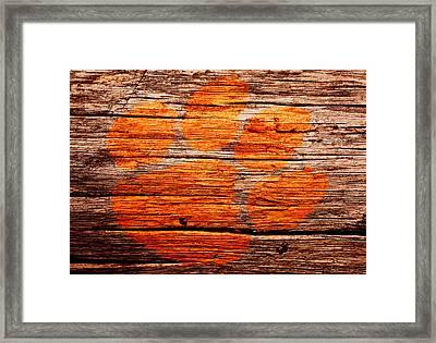 The Clemson Tigers  Framed Print