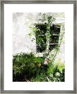 Framed Print featuring the photograph The Climb by Claire Bull