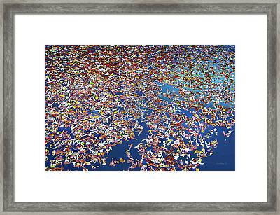 The Collective Framed Print by Brian Wallace