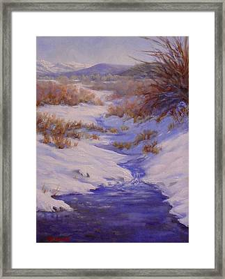 The Color Of Winter Framed Print by Debra Mickelson
