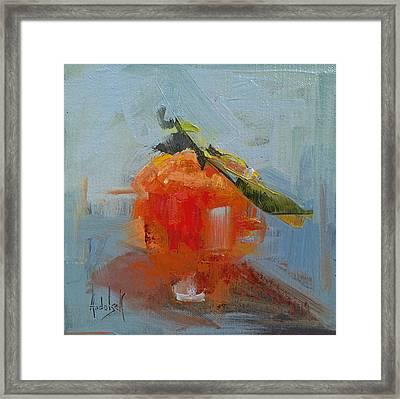 The Color Orange Framed Print by Barbara Andolsek