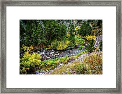 The Colorado Advantage Framed Print by Jon Burch Photography