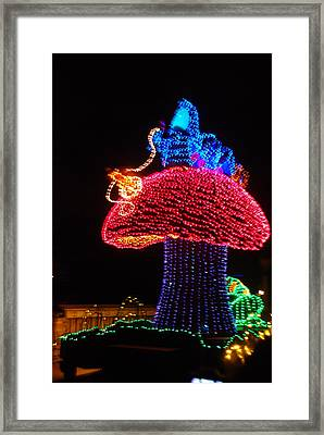 The Colorful Mushroom Framed Print by Rob Hans