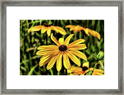Framed Print featuring the photograph The Colors And Details by Monte Stevens