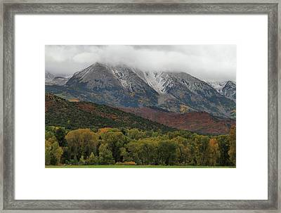 The Colors Of Fall In Colorado Framed Print by Dan Sproul