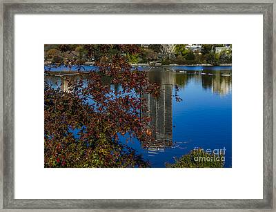 The Colors Of Fall Framed Print by K'lee L