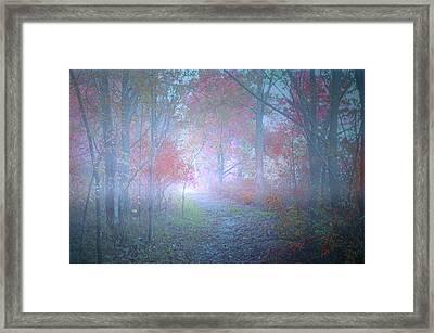 The Colours Hidden By An October Fog Framed Print