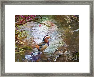 Framed Print featuring the photograph The Colours Of Spring by LemonArt Photography