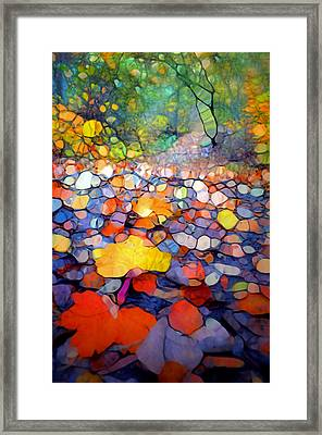 The Colours Of The Forest Floor Framed Print by Tara Turner