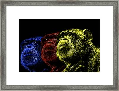 The Colours Of Trepidation  Framed Print by Paul Neville