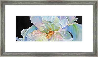 The-colours-of-white Framed Print by Nancy Newman