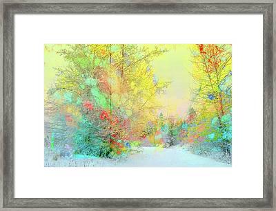 The Colours Winter Hides Inside Framed Print by Tara Turner
