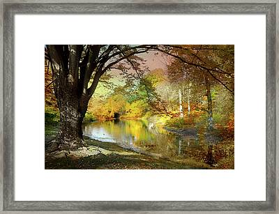 The Concession Framed Print