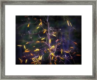 The Consistency Of Change Framed Print by Brian Wallace