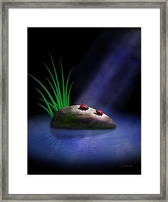 The Conversation Framed Print by John Wills