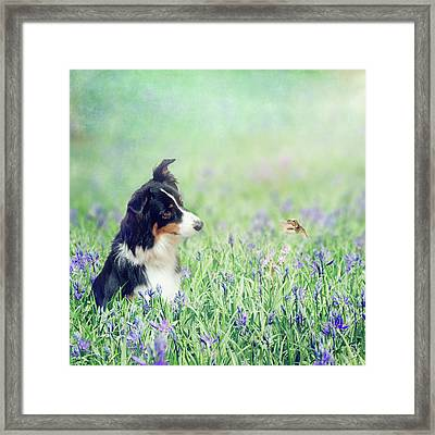 The Conversation Framed Print by Margaret Goodwin