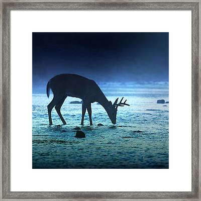 The Cool Of The Night - Square Framed Print by Rob Blair
