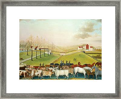 The Cornell Farm Framed Print