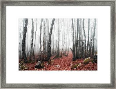 The Corridor Framed Print