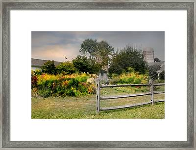 The Country Life Framed Print