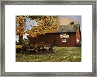 The Country Tack Shop Framed Print