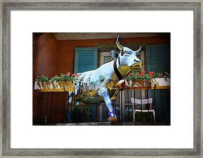 The Cow On The Balcony Framed Print by Carol Japp