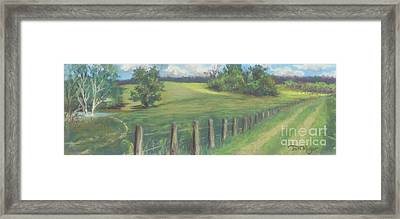 The Cow Path To The Pond Framed Print by Terri  Meyer