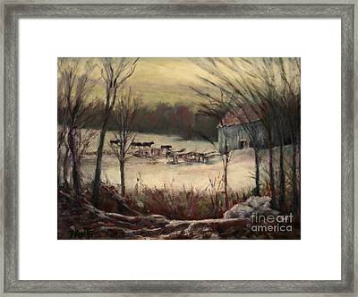 The Cows Come Home Framed Print