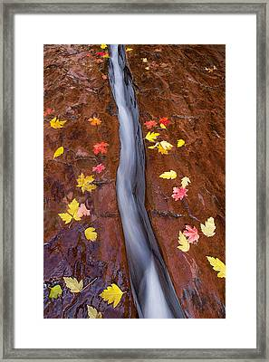 Framed Print featuring the photograph The Crack by Patricia Davidson