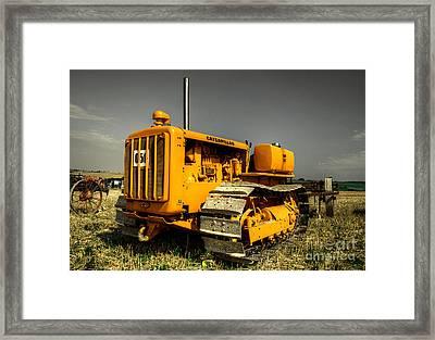 The Crawler Framed Print by Rob Hawkins