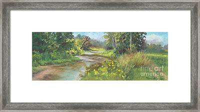The Creek At 1302 Framed Print by Terri  Meyer