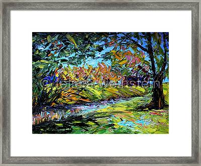 The Creek Framed Print