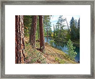 The Creek Framed Print by Nancy Harrison