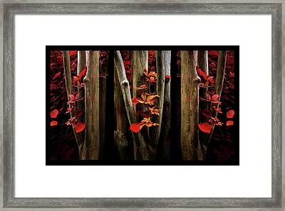Framed Print featuring the photograph The Crimson Forest by Jessica Jenney