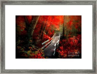 The Crimson Forest Framed Print by Tara Turner