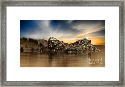 Framed Print featuring the photograph The Crocodile by Christine Sponchia