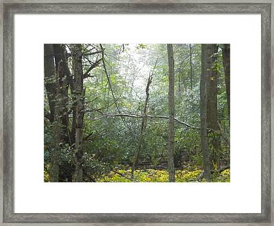 Framed Print featuring the photograph The Cross In The Woods by Diannah Lynch
