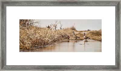 The Crossing Framed Print by Patrick Ziegler