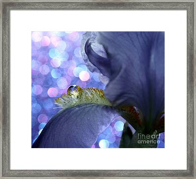 The Crystal Ball Of Nature Framed Print by Krissy Katsimbras