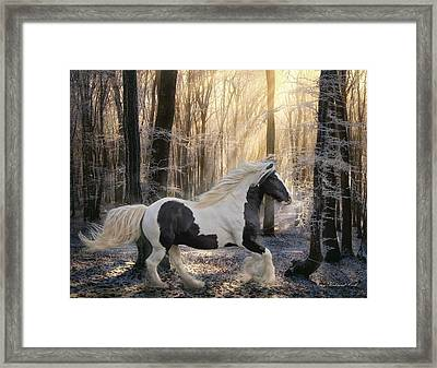 The Crystal Morning Framed Print