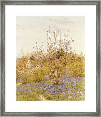 The Cuckoo Framed Print