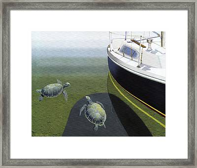 The Curiosity Of Sea Turtles Framed Print