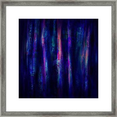 The Curtain Framed Print by Rachel Christine Nowicki